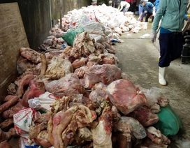 Phát hiện 15 tấn nội tạng động vật rỉ nước, bối mùi hôi thối