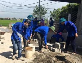 Tuổi trẻ TP Hà Tĩnh chung tay xây dựng nông thôn mới