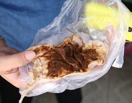 Hà Nội: Khốn khổ cảnh dùng khăn xô lọc nước sinh hoạt đục như nước sông