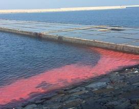 Làm rõ dải nước màu đỏ dài 50 m ở cảng Vũng Áng