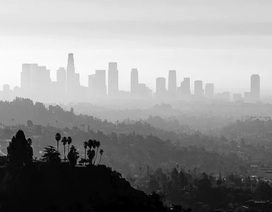 Ô nhiễm không khí sẽ ảnh hưởng nghiêm trọng hơn tới người có nhóm máu A, B và AB