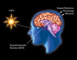 Ô nhiễm ánh sáng: Những điều bạn cần biết!