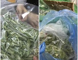 Người Hà Nội chi tiền triệu mua loại rau đắt ngang tôm hùm