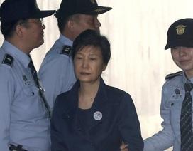 7 luật sư bào chữa cho cựu Tổng thống Hàn Quốc đồng loạt xin rút
