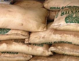 Tiêu hủy hơn 7 tấn phân bón không rõ nguồn gốc, xuất xứ