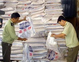 Hơn 50% phân bón, sắt thép nhập vào Việt Nam là từ Trung Quốc