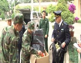 Bắt giữ gần 4 tấn pháo nổ Trung Quốc nhập lậu trái phép