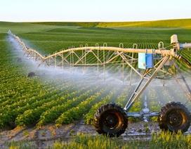 Chính phủ yêu cầu tạo thuận lợi để thu hút doanh nghiệp đầu tư nông nghiệp