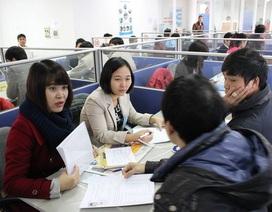 Sáng 10/1, Sàn GDVL Hà Nội: Hơn 600 việc làm thời vụ chờ ứng viên