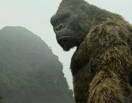 Bộ Văn hoá lý giải ý tưởng dựng mô hình khỉ Kong ở hồ Hoàn Kiếm