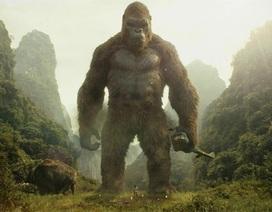 Đề xuất dựng mô hình khỉ Kong ở phố đi bộ hồ Hoàn Kiếm