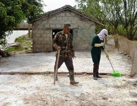 Nam Định: Bùng phát H5N1, 70 người bị giám sát chặt chẽ