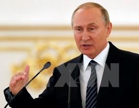 Tổng thống Putin: Nga không có đối tác lớn hay đối tác bé