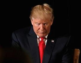 Quỹ từ thiện của ông Donald Trump giải tán