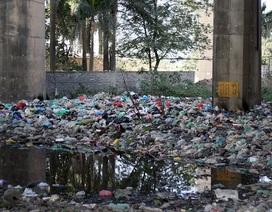 Hà Nội: Rác ngập chân cầu Thăng Long, bốc mùi nồng nặc