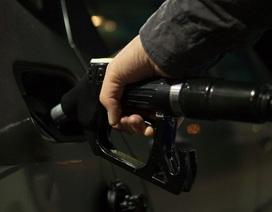 Dữ liệu mới cho thấy độc tính của xe động cơ diesel