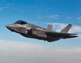 Tổng thống Donald Trump bắt đầu khai tử F-35?