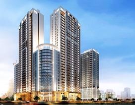 800 triệu đồng nhận nhà ở ngay thanh toán theo tiến độ tại chung cư cao cấp Sun Square