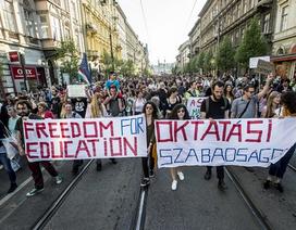 """DHS Việt """"nín thở"""" với luật Giáo dục ĐH mới tại Hungary"""