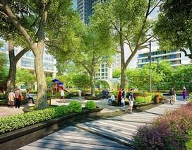Người Nhật quan tâm đến dự án nào tại Hà Nội?