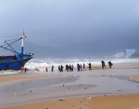 Biển động dữ dội nhấn chìm 23 bè cá của người dân Lý Sơn