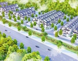 Cơ hội sở hữu biệt thự sinh thái Iris Homes tại Hà Nội với ưu đãi hấp dẫn