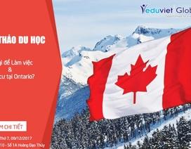 Du học Canada: Học gì để làm việc & định cư tại Ontario?