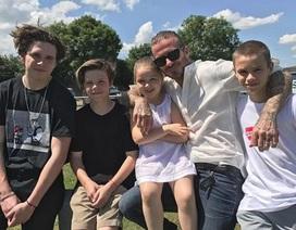 """Beckham mừng rơn khi được """"nhận quà"""" trong Ngày của Cha"""