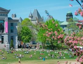 """Chạy """"nước rút"""" du học Canada kỳ mùa xuân 2018 theo diện visa ưu tiên - Không chứng minh tài chính"""