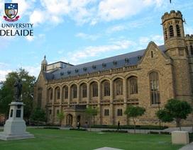 Những thuận lợi khi học tập tại thành phố Adelaide từ trung học đến Đại học
