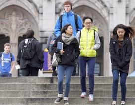 Tăng cơ hội định cư Canada sau tốt nghiệp với lộ trình du học thông minh