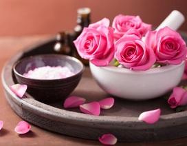 Không chỉ đẹp, hoa hồng còn có rất nhiều lợi ích mà bạn có thể chưa biết