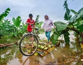 Hà Nội: Bé trai 15 tuổi đóng bè chuối đưa mẹ và chị đi chợ hàng ngày