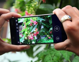 5 điểm thu hút khó cưỡng của Nokia 5