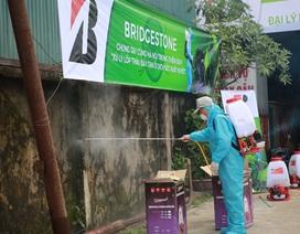 Chung tay xử lý lốp xe phế thải để đẩy lùi dịch sốt xuất huyết