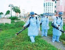 Chủ tịch huyện phải chịu trách nhiệm nếu sốt xuất huyết bùng phát, lan rộng