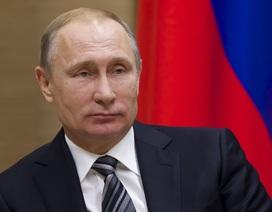 Bé gái được tặng iPhone X nhờ làm thơ về ông Putin