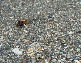 """Truy tìm """"99% rác nhựa trên biển biến mất"""" bằng phương pháp mới"""