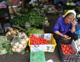 Mưa liên tục nhiều ngày, rau củ khan hiếm, giá đắt gấp đôi