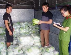 Bị phạt 3 triệu đồng vì bán 2 tấn rau Trung Quốc không rõ nguồn gốc