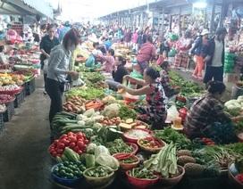Đà Nẵng: Mưa lũ kéo dài, giá rau xanh tăng chóng mặt