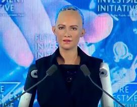 Khi núi, sông, robot được cấp quyền công dân như con người