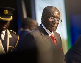Chờ luận tội, Tổng thống Zimbabwe vẫn triệu tập nội các