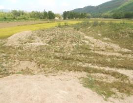 Bình Định: Dân bỏ ruộng hoang vì doanh nghiệp khai thác đá
