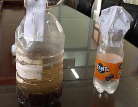 Giám sát, điều tra ca ngộ độc rượu tập thể tại Thái Bình
