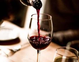 Uống rượu giúp não hoạt động tích cực hơn