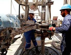 """""""Ảnh hưởng của Qatar về dầu mỏ là không đáng kể"""""""