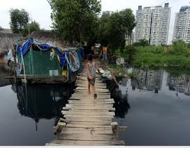 Bắt ốc, đánh cá... ở xóm miền Tây giữa lòng Sài Gòn