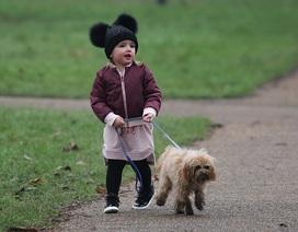 Cháu gái 2 tuổi của tỷ phú Anh sành điệu dắt cún cưng đi dạo