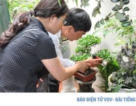 Hà Nội: Bệnh nhân đầu tiên tử vong do sốt xuất huyết trong năm nay